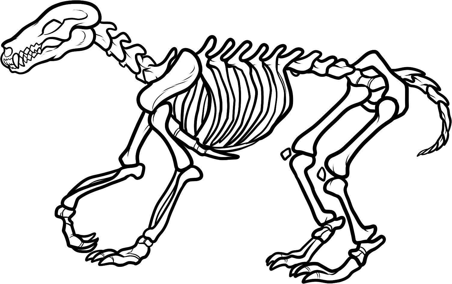 Dinosaur Skeleton Clip Art Free Clipart Images 2