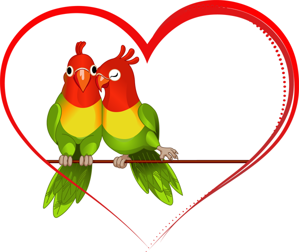 love birds clipart 9cpbrb7xi