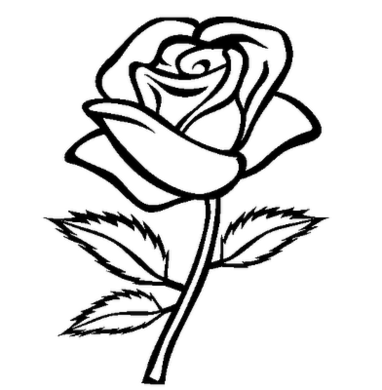 Rose Flowers Clipart Black And White