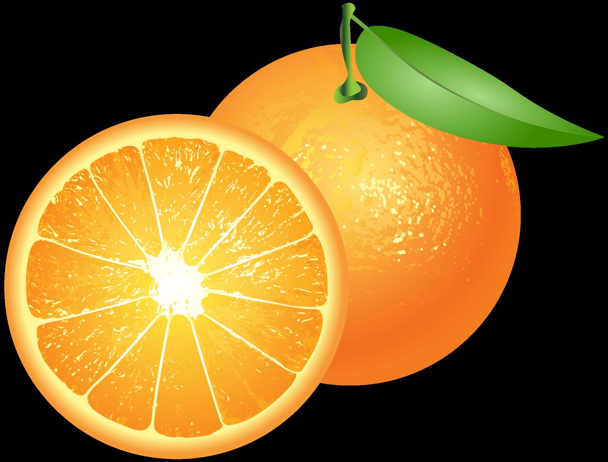 oranges png clip art rh clipart info oranges clipart png mandarin oranges clipart
