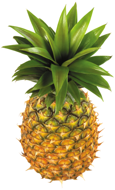 Pineapple Fruit PNG Clipart