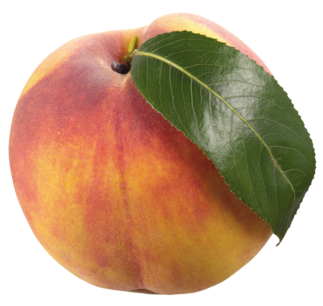 Peach with Leaf PNG Clipart