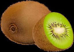 kiwi fruit png clipart rh clipart info kiwi clipart animal kiwi clipart black and white