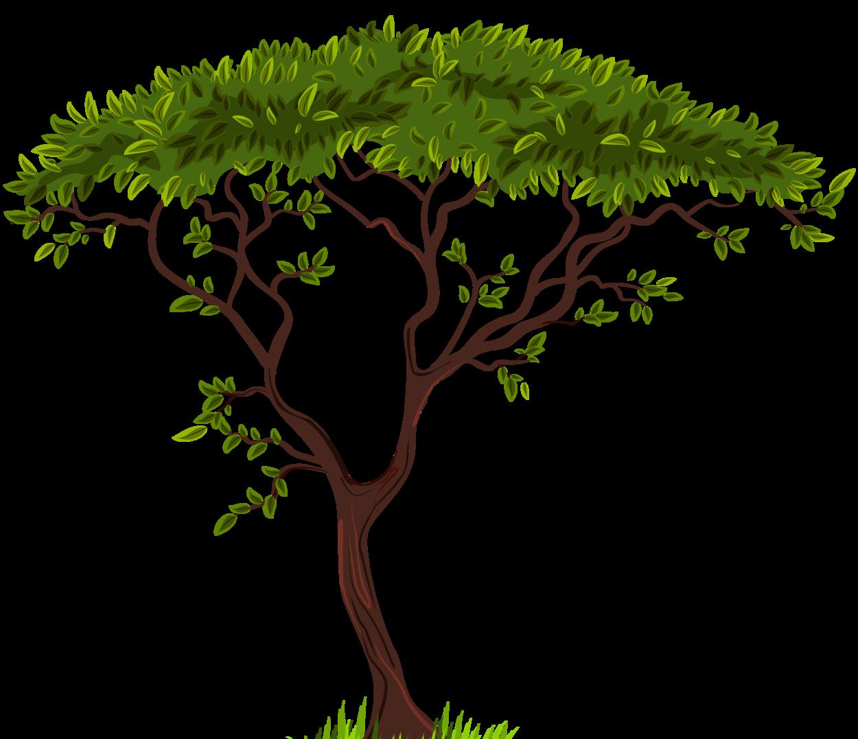 Exotic Tree Png Clip Art