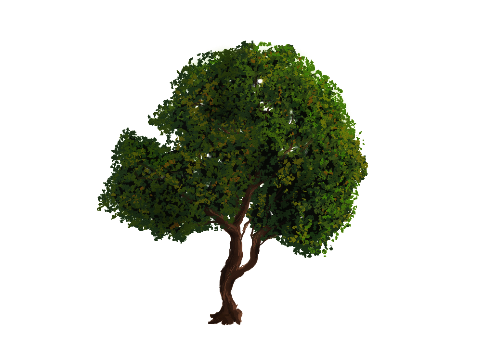 tree png 1380909968