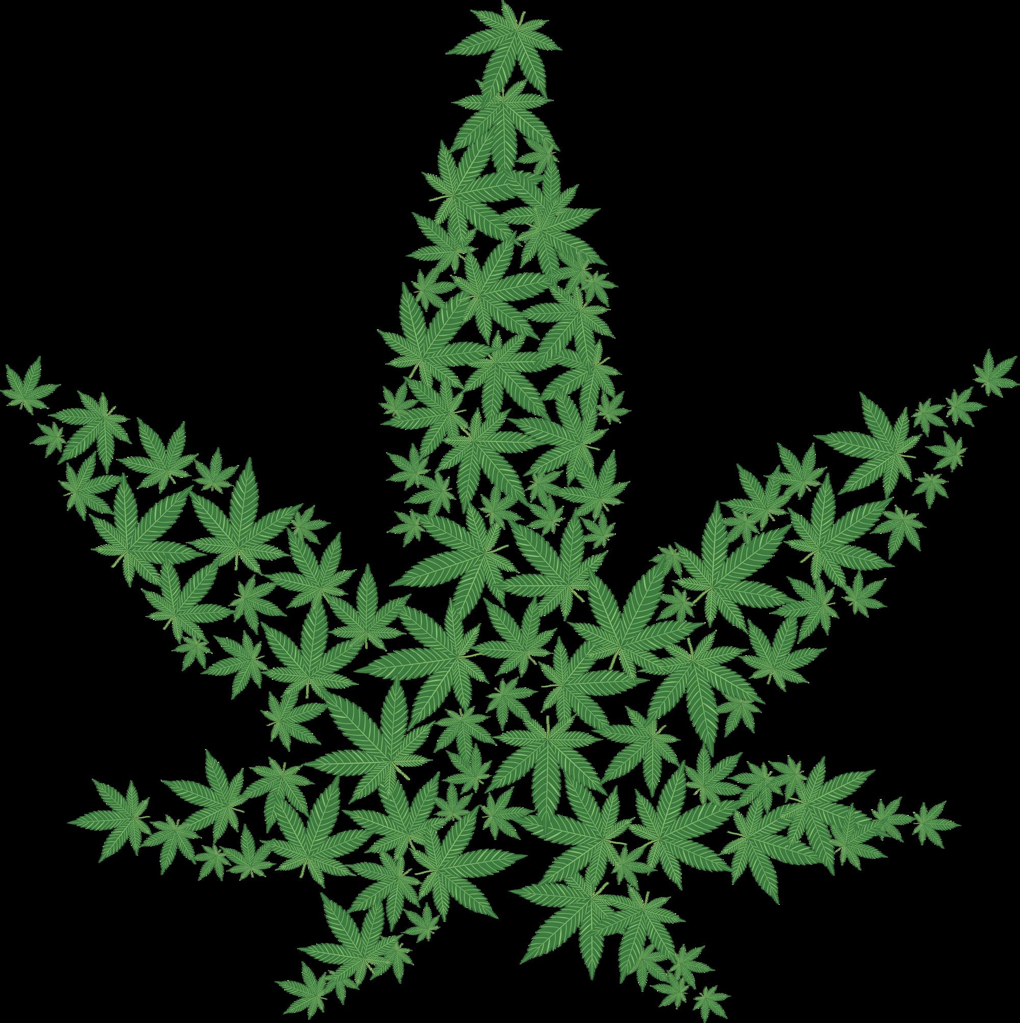 Pot Cannabis Marijuana Leaf Png HD Iloveimg Resized
