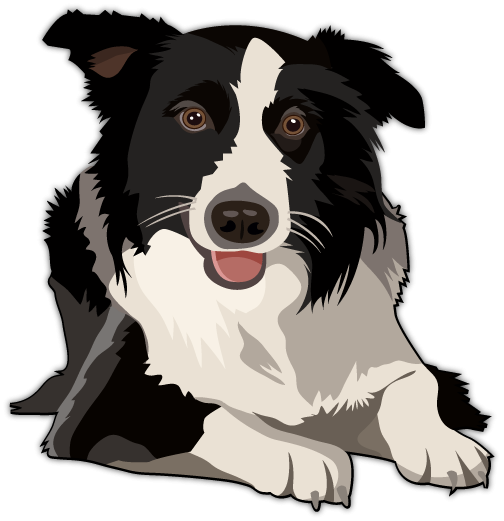 border collie png clipart rh clipart info Dog Clip Art border collie clipart free