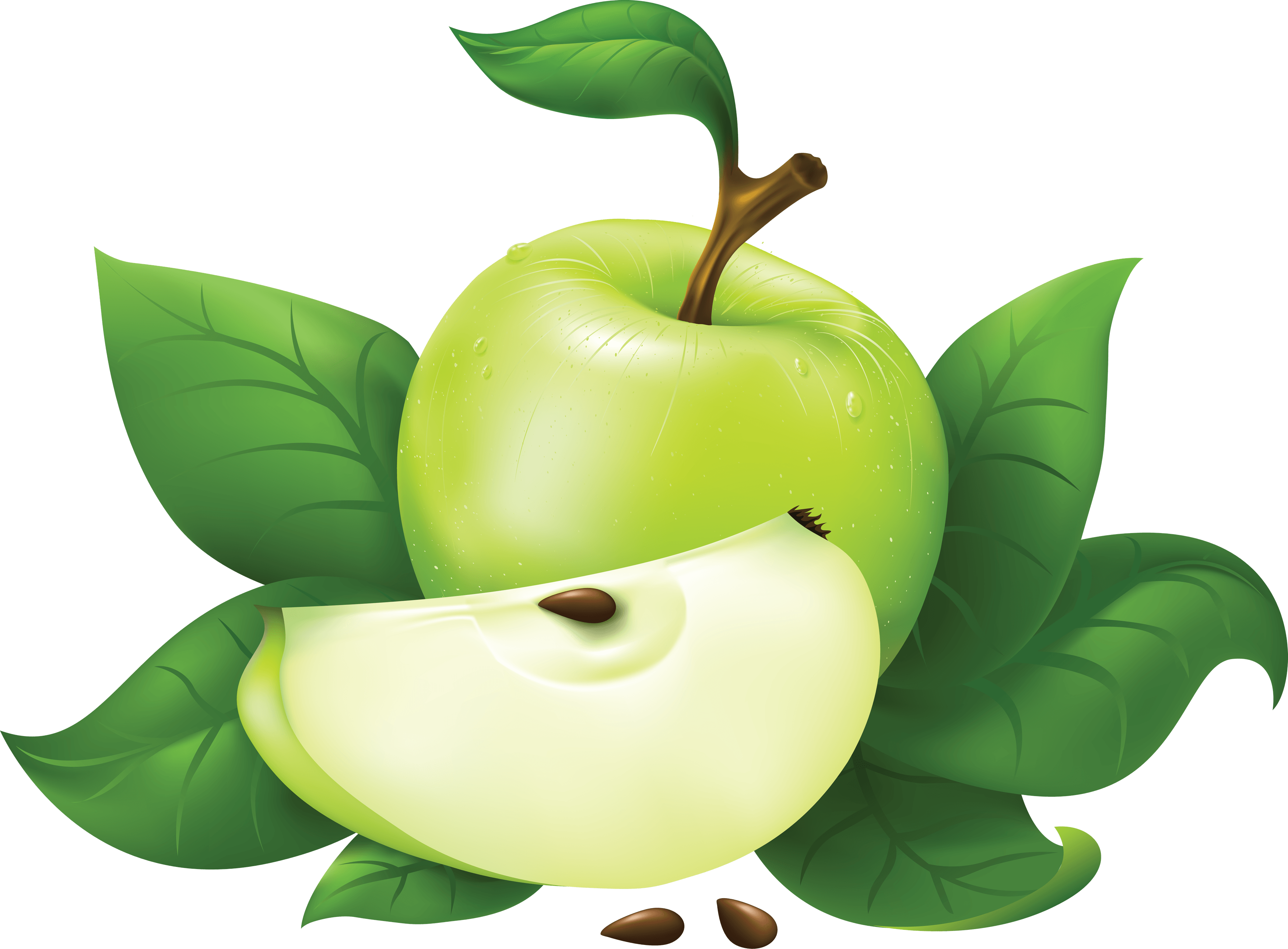 47 green apple png image
