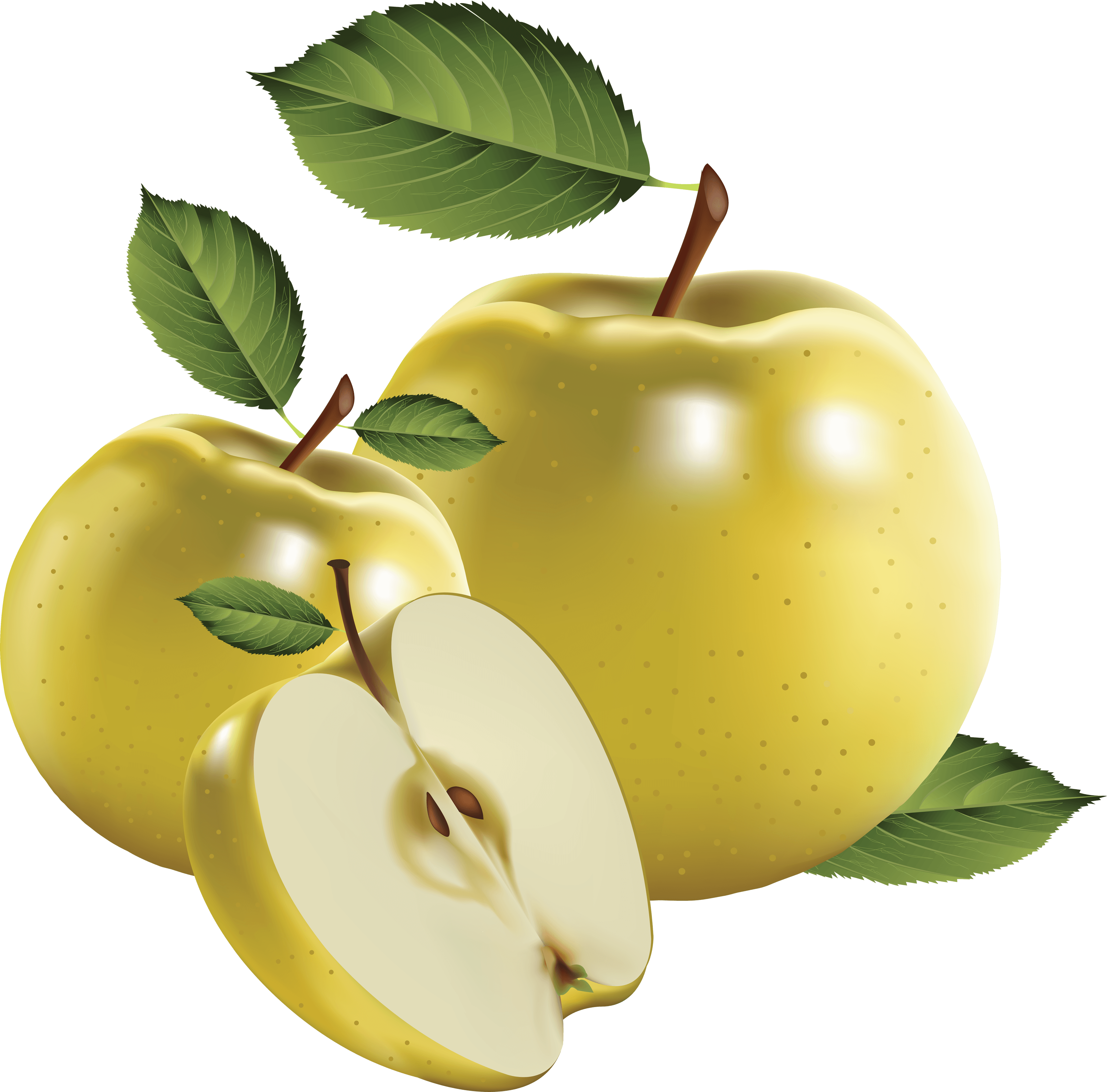 6 png apple image clipart transparent png apple