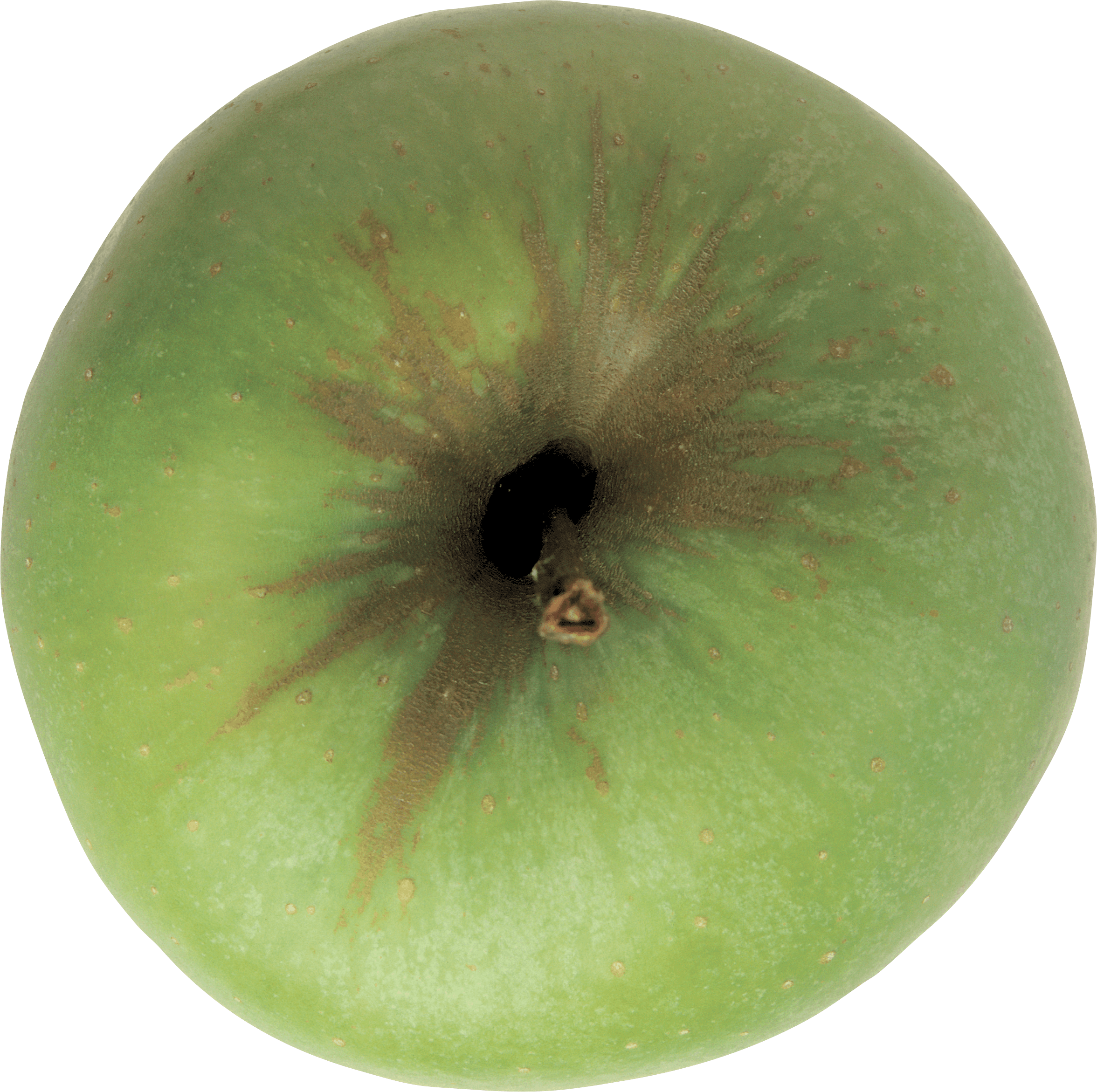 57 green apple png image