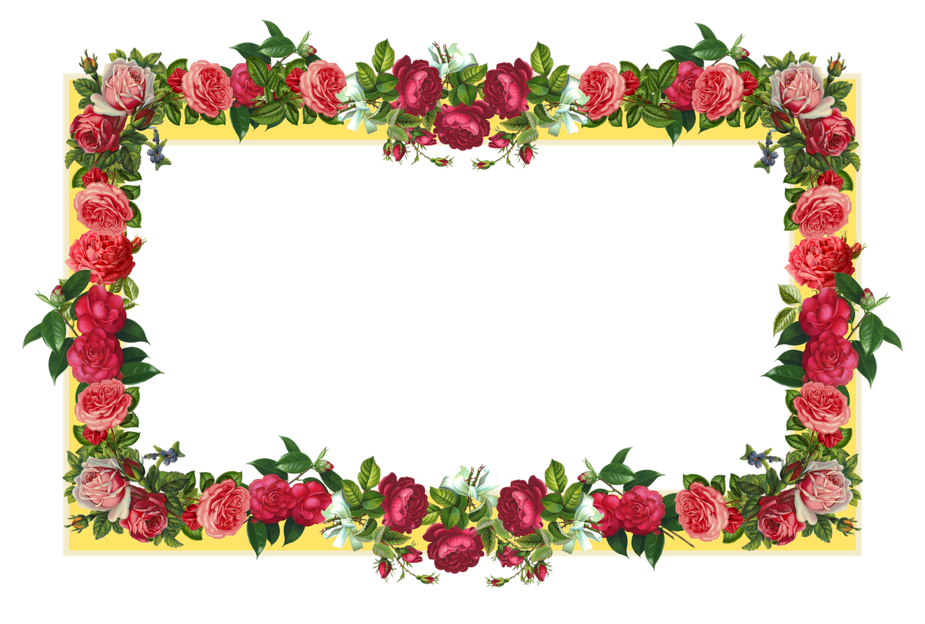 10 2 Flowers Borders Png Images