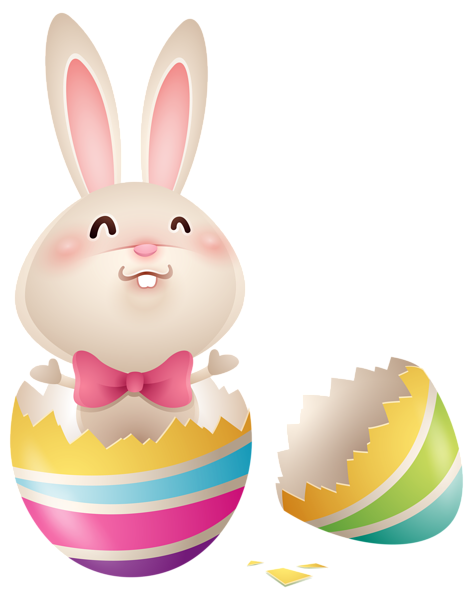 Easter Bunny in Egg PNG Picture Image
