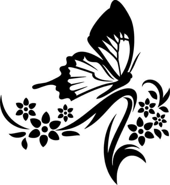 Flower black and white butterfly. Clipart