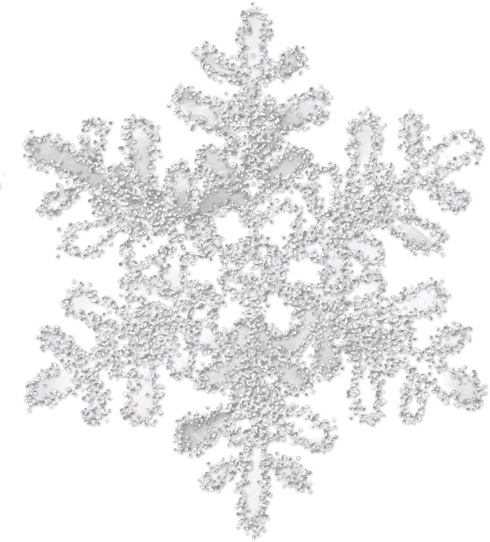 gray white snowflake png transparent 12