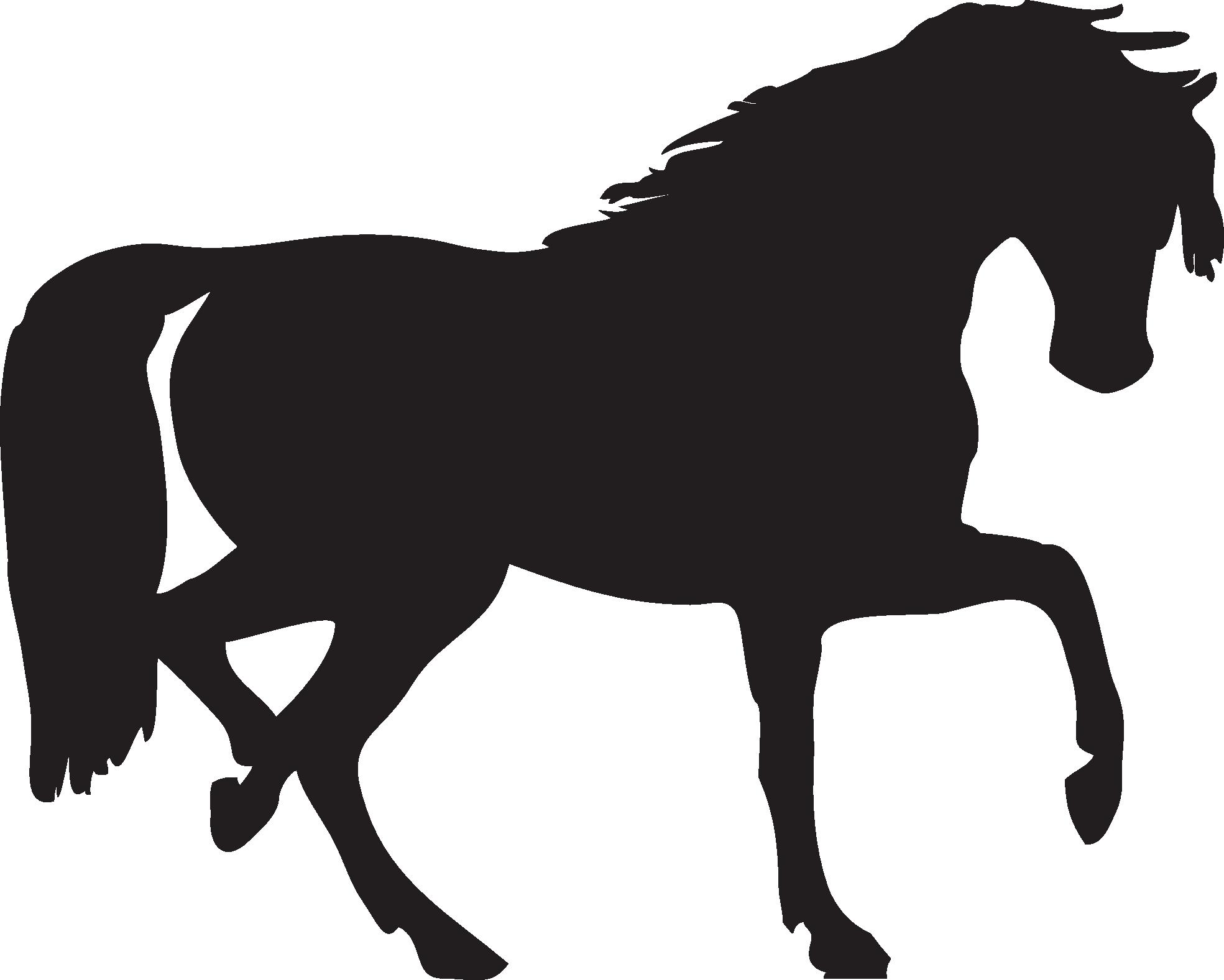 Black Horse Png Animal 2