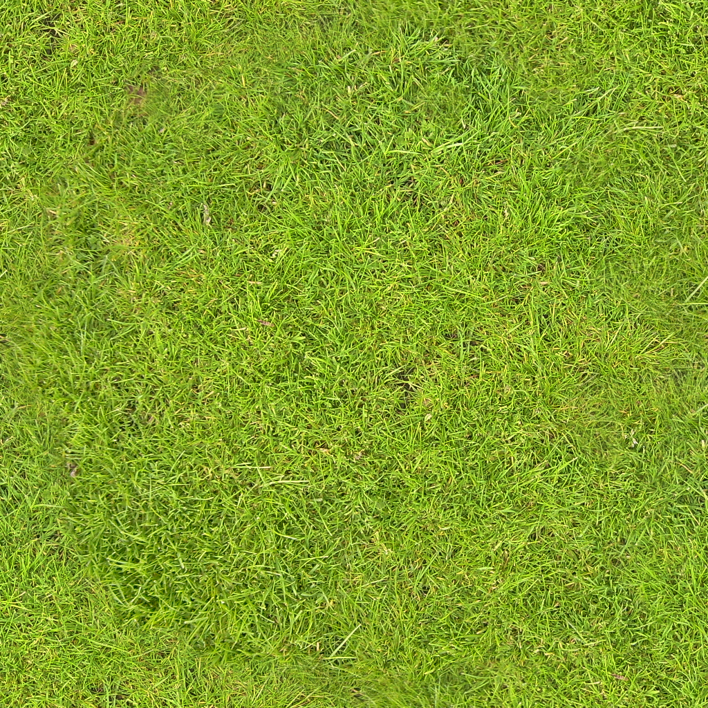 natural grass png top view