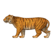 ios emoji tiger
