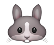 ios emoji rabbit face