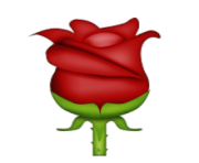 ios emoji rose