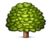ios emoji deciduous tree