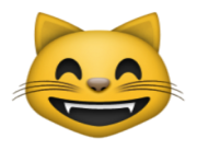 ios emoji grinning cat face with smiling eyes