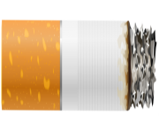 Cigarette with Ash PNG Clipart