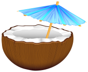 Coconut Cocktail PNG Clip Art