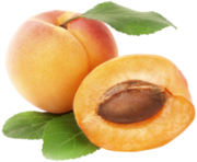 Apricots PNG Clipart