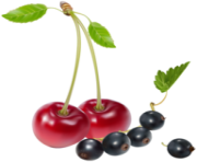 Cherries and Blueberries PNG Clipart
