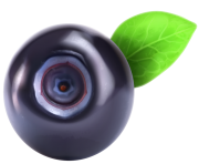 Blueberry PNG Clipart