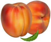 Peaches PNG Clipart