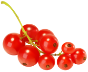 Red Currants PNG Clipart