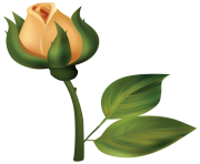 Yellow Rose Bud PNG Clipart