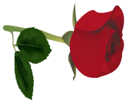 Red Rose Bud PNG Clipart