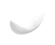 simple white feaher png