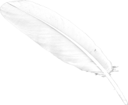 white feaher png