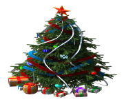 fir tree png transparent 2510