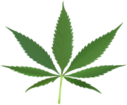 cannabis leaf hd
