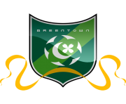hangzhou greentown fc football logo png