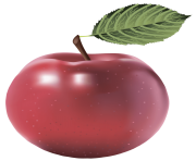 17 apple png image