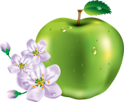 15 green apple png image