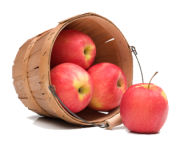 1 2 apple fruit picture