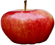 73 apple png image