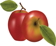 27 red apple png image