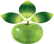 21 green apple png image