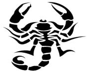 21 tattoo scorpion png image