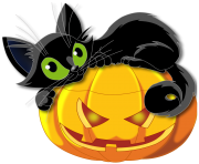 cat pumpkin halloween png picture