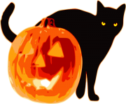 halloween cat with pumpkin hi