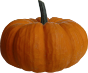 14 2 pumpkin png file
