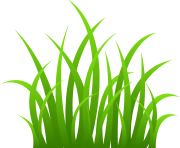 grass png cartoon